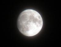 luna_2